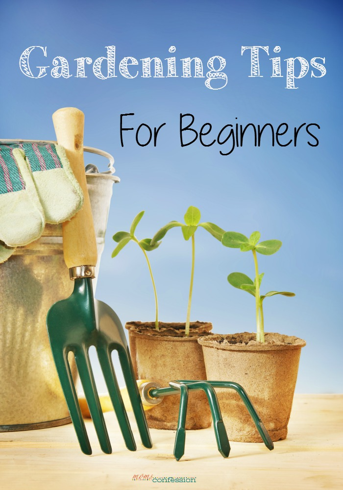 Gardening tips for beginners for Gardening tips