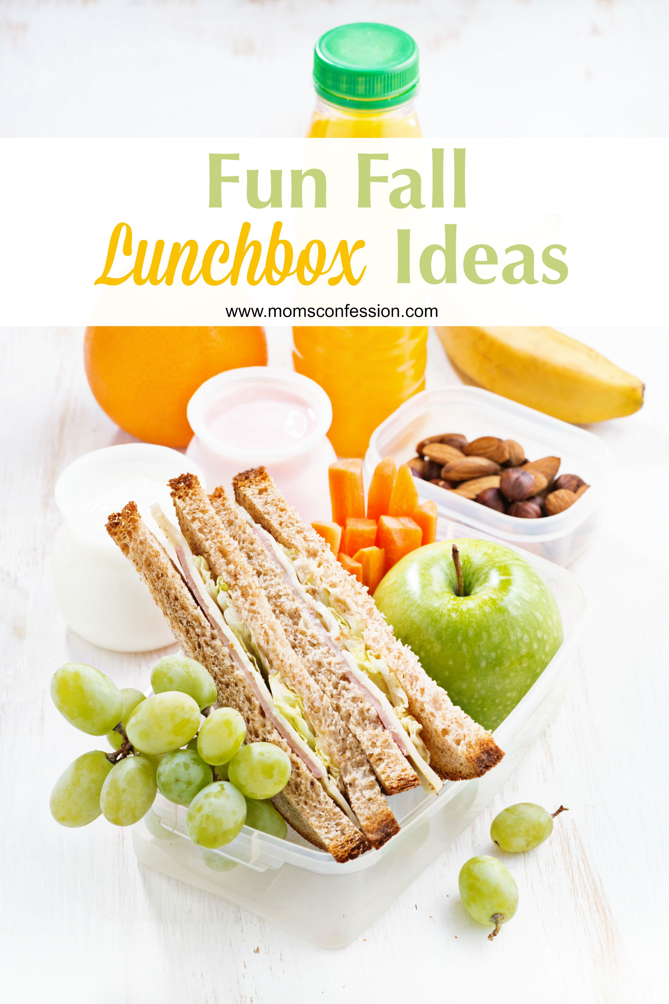 Lunchbox Ideas like our list of Fun Fall Lunchbox Ideas make it easy to pack lunch for your kids each day! Grab our tips and make your kids lunch they love!