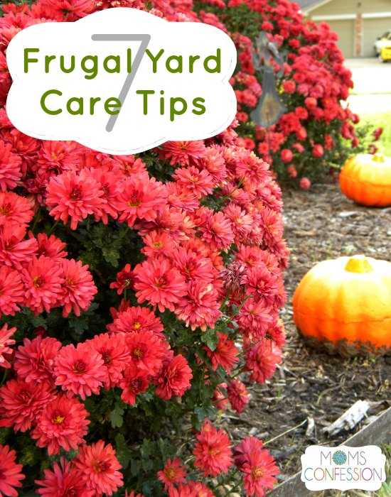7 Frugal Yard Care Tips