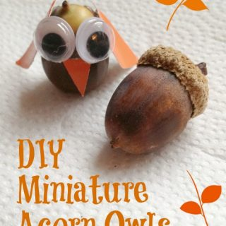 Have fun making these miniature acorn owls with this kids this week. Super easy fall craft idea...