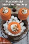 Take care of your sweet tooth with these delicious Pumpkin Spice Marshmallow Pops!
