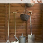 5 Easy Steps to Preserve Your Garden This Fall