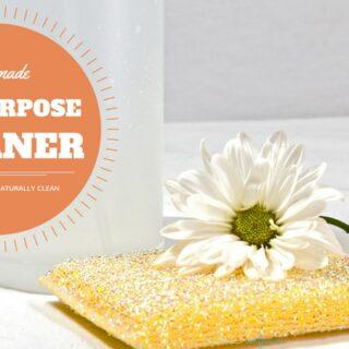 4 Ingredient Natural DIY All Purpose Cleaner