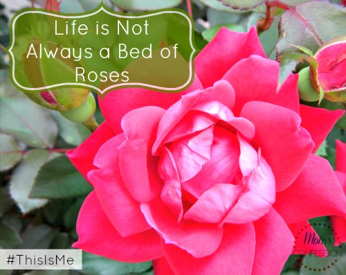 Life is Not Always a Bed of Roses