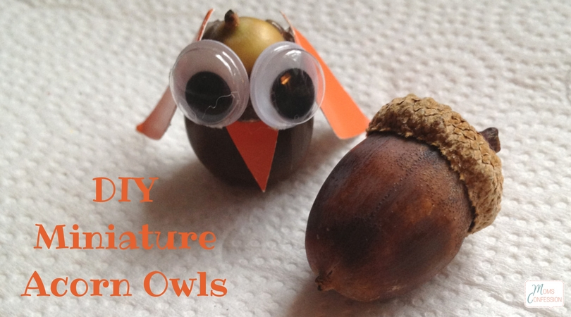"These miniature acorn owls are the perfect little project to make this fall season with kids. They will be ""hooting"" with joy when they see their creation!"
