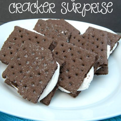 Try this healthier spin on the traditional ice cream sandwich with this Chocolate Graham Cracker Surprise!!