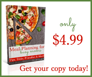 Buy Meal Planning for Busy Moms and meal plan like a pro in no time! ONLY $4.99