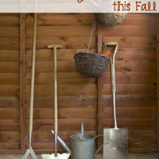 The 5 easy tips will help you preserve your garden this fall.