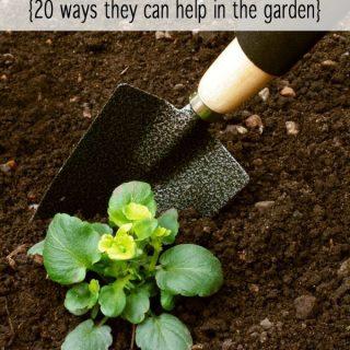 Gardening with kids - 20 ways kids can help in the garden this season.
