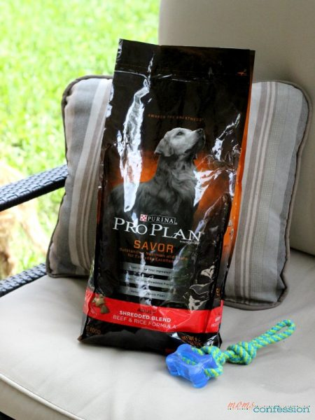 Purina Pro Plan – the only dog food for Maddie {no sew dog bed project}