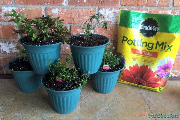 Herb-Garden-Planter
