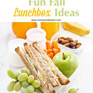 Fun Fall Lunchbox Ideas - Fall is FINALLY here, and that means we get to pack fun lunches for our kids. If you're curious about what type of lunchbox ideas you can pack for your children this fall, consider these tips.