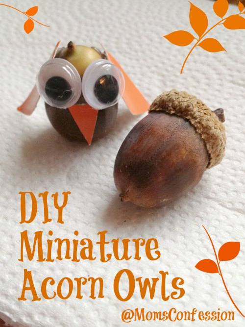 Miniature Acorn Owls Craft